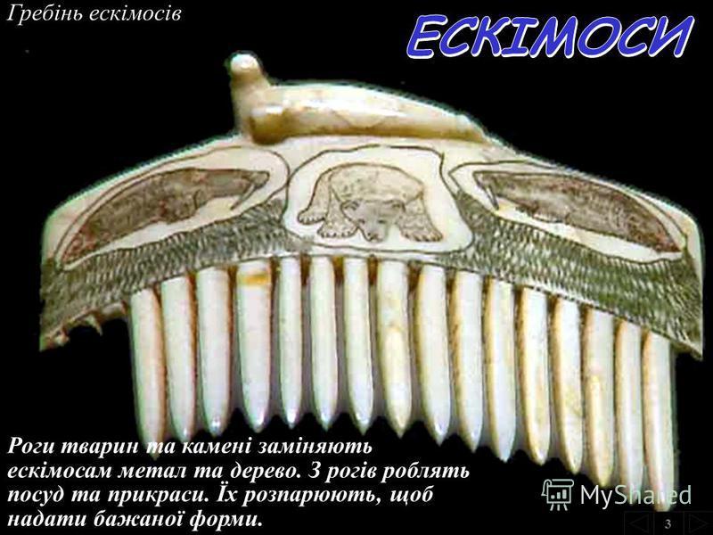 Ескімоси після вдалого полювання на кита 3 Як паливо ескімоси застосовують жир тюленів або просякнуті жиром кістки китів.