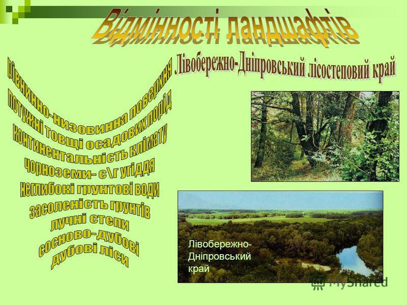 Лівобережно- Дніпровський край