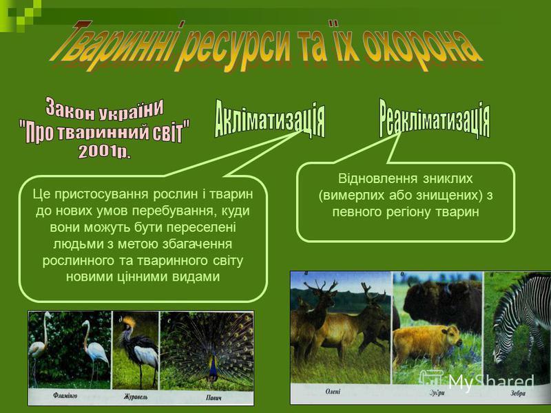 Це пристосування рослин і тварин до нових умов перебування, куди вони можуть бути переселені людьми з метою збагачення рослинного та тваринного світу новими цінними видами Відновлення зниклих (вимерлих або знищених) з певного регіону тварин