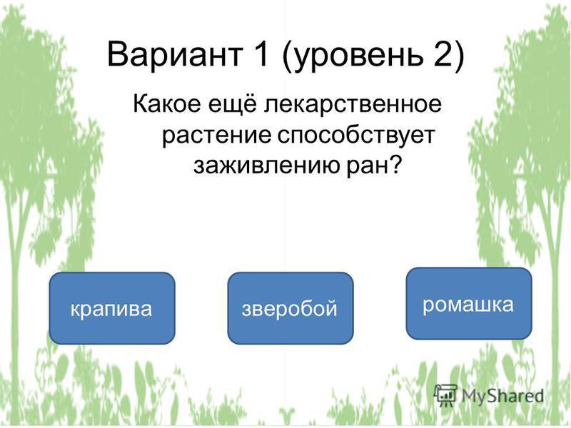 Вариант 1 (уровень 2) Какое ещё лекарственное растение способствует заживлению ран? крапива зверобой ромашка