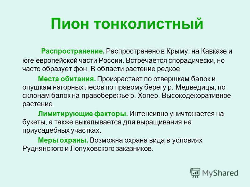 Пион тонколистный Распространение. Распространено в Крыму, на Кавказе и юге европейской части России. Встречается спорадически, но часто образует фон. В области растение редкое. Места обитания. Произрастает по отвершкам балок и опушкам нагорных лесов