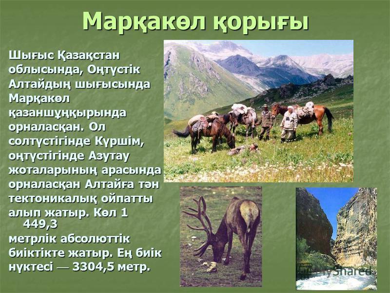 Марқакөл қорығы Шығыс Қазақстан облысында, Оңтүстік Алтайдың шығысында Марқакөлқазаншұңқырында орналасқан. Ол солтүстігінде Күршім, оңтүстігінде Азутау жоталарының арасында орналасқан Алтайға тән тектоникалық ойпатты алып жатыр. Көл 1 449,3 метрлік а