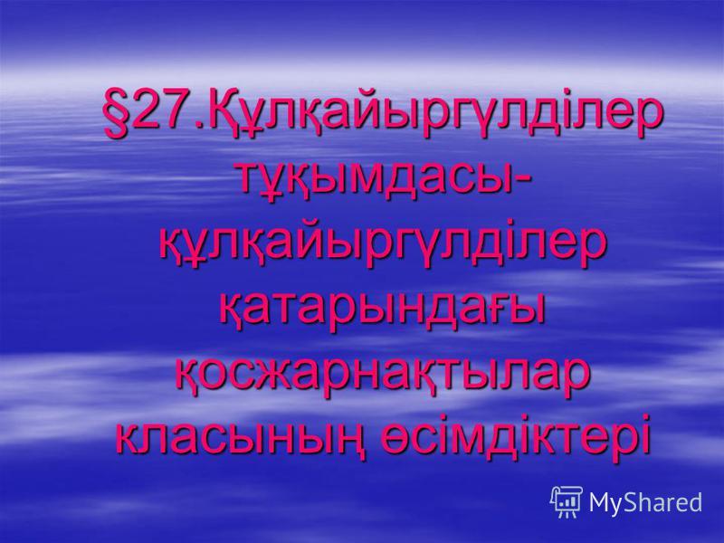§27.Құлқайыргүлділер тұқымдасы- құлқайыргүлділер қатарындағы қосжарнақтылар класының өсімдіктері