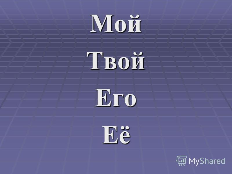 Мой ТвойЕгоЕё