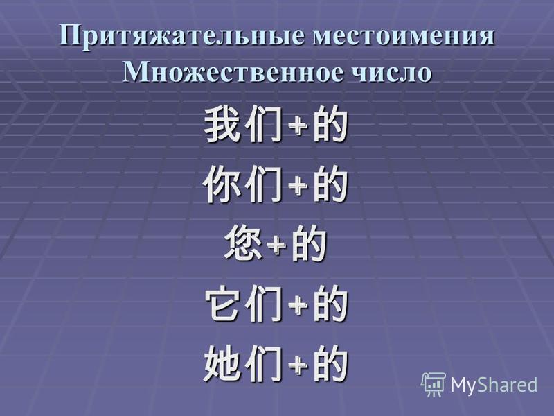 Притяжательные местоимения Множественное число + +