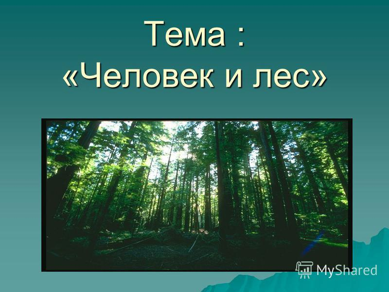 Тема : «Человек и лес»