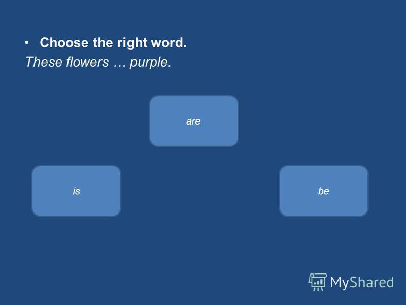 Choose the right word. These flowers … purple. are isbe
