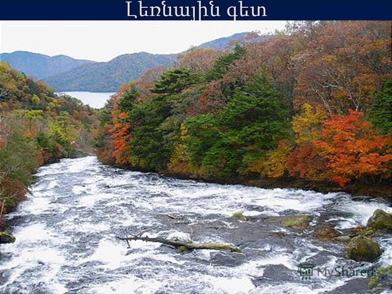 Լեռնային գետ