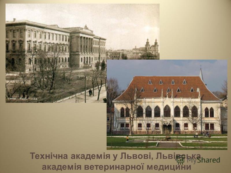 Технічна академія у Львові, Львівська академія ветеринарної медицини