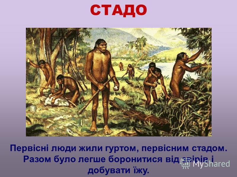 СТАДО Первісні люди жили гуртом, первісним стадом. Разом було легше боронитися від звірів і добувати їжу.