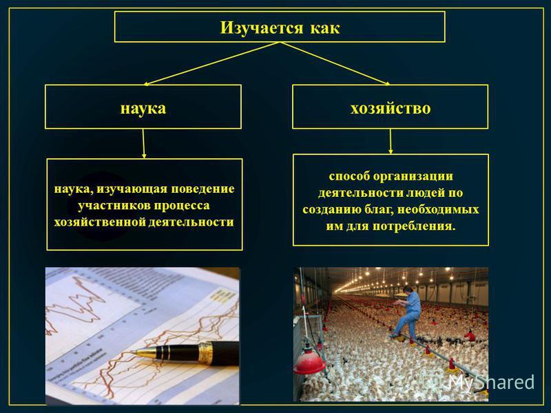 Изучается как наука хозяйство способ организации деятельности людей по созданию благ, необходимых им для потребления. наука, изучающая поведение участников процесса хозяйственной деятельности
