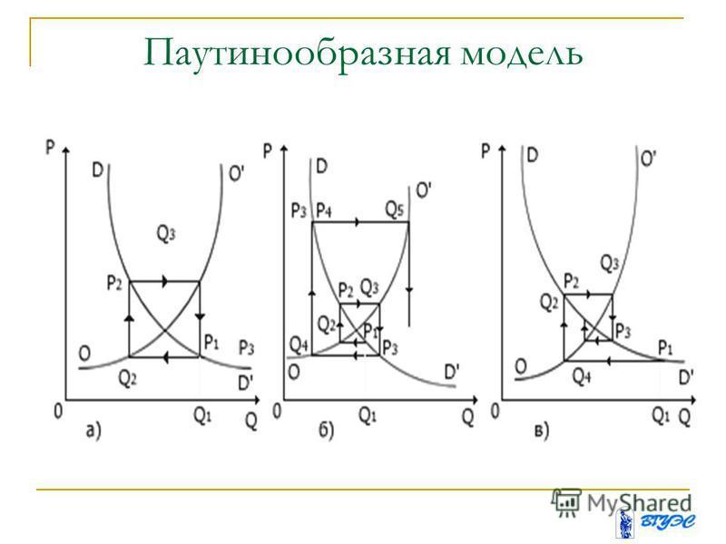 Паутинообразная модель