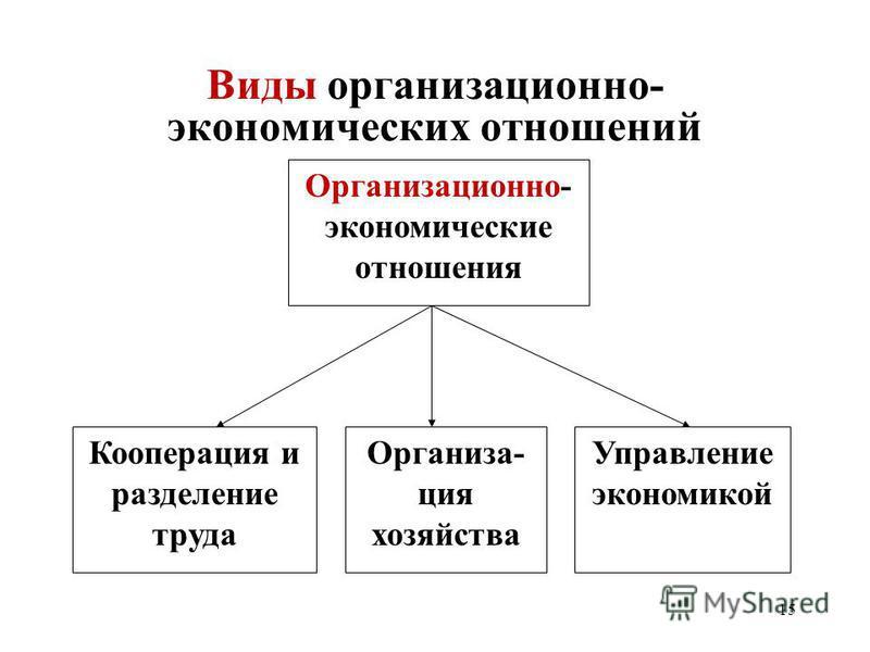 15 Виды организационно- экономических отношений Организационно- экономические отношения Организа- ция хозяйства Кооперация и разделение труда Управление экономикой
