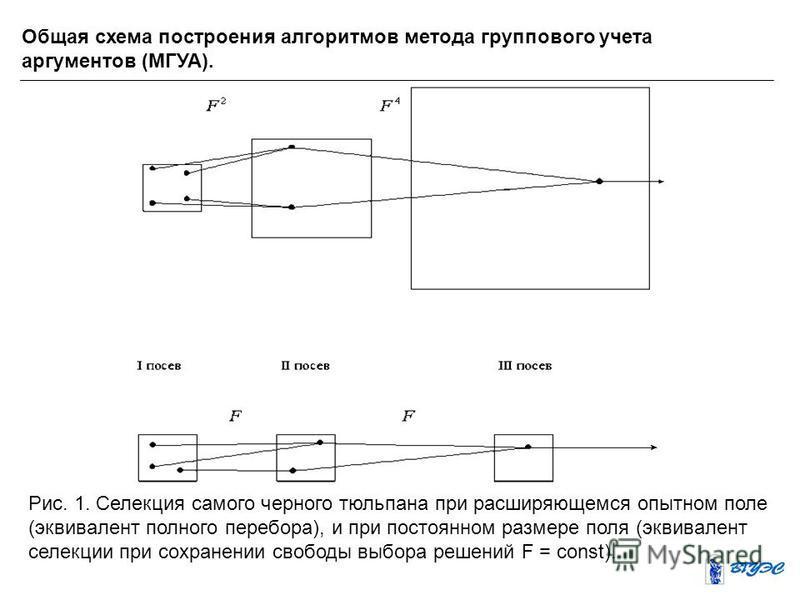 Общая схема построения алгоритмов метода группового учета аргументов (МГУА). Рис. 1. Селекция самого черного тюльпана при расширяющемся опытном поле (эквивалент полного перебора), и при постоянном размере поля (эквивалент селекции при сохранении своб