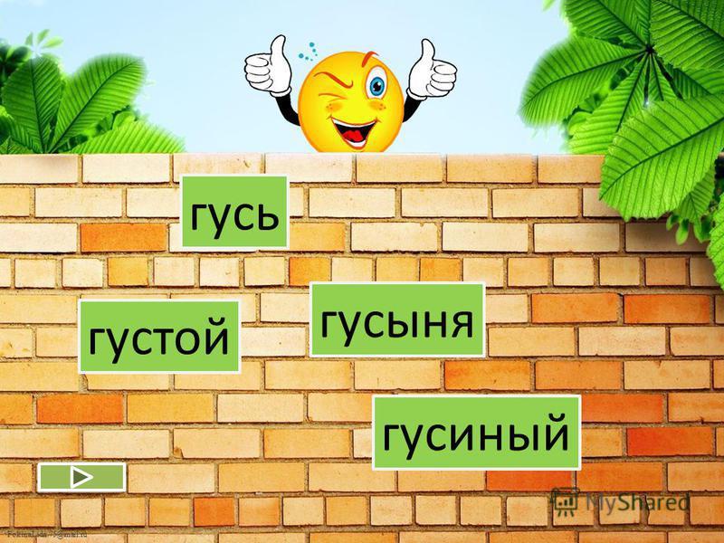 FokinaLida.75@mail.ru левый левша налево лев