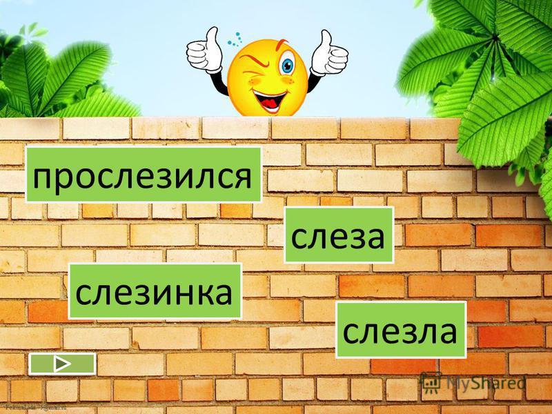 FokinaLida.75@mail.ru гусыня гусь гусиный густой