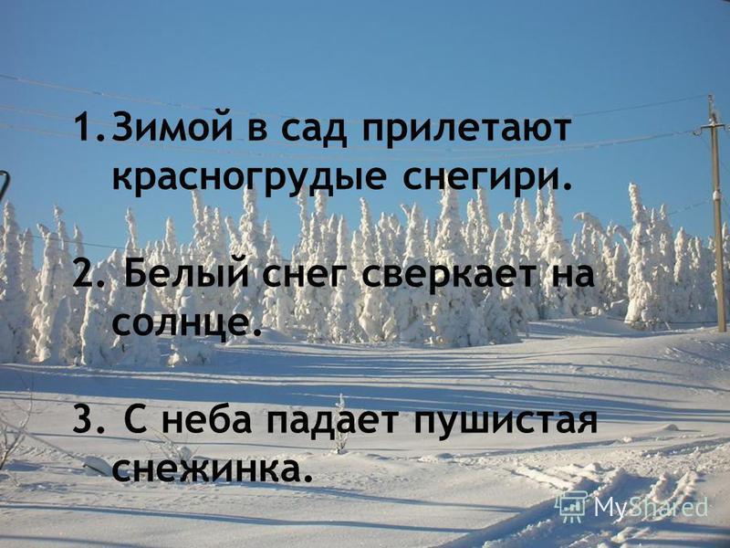 1. Зимой в сад прилетают красногрудые снегири. 2. Белый снег сверкает на солнце. 3. С неба падает пушистая снежинка.