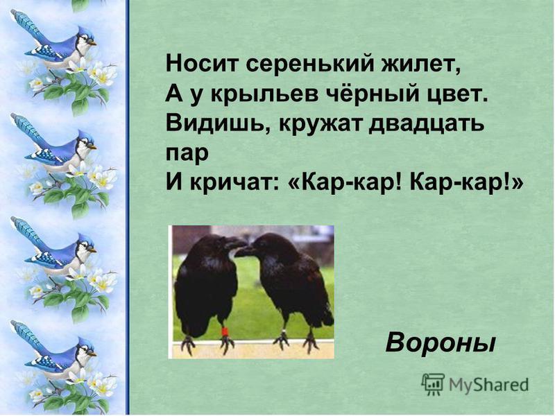 Носит серенький жилет, А у крыльев чёрный цвет. Видишь, кружат двадцать пар И кричат: «Кар-кар! Кар-кар!» Вороны