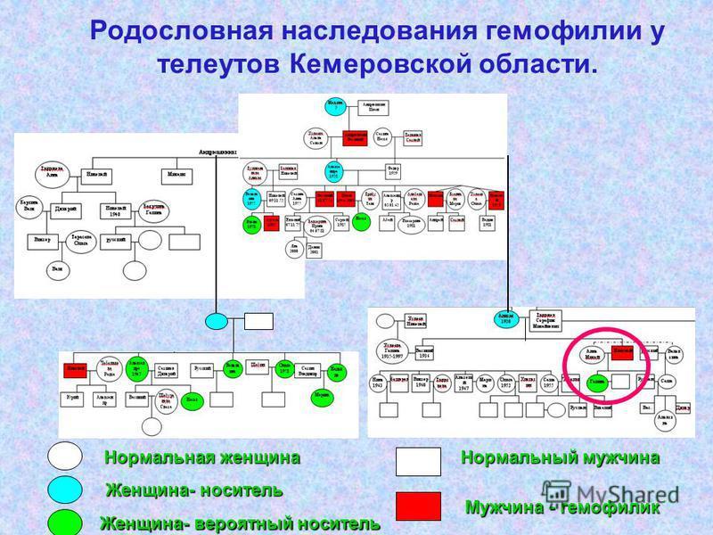 Родословная наследования гемофилии у телеутов Кемеровской области. Нормальная женщина Нормальный мужчина Женщина- носитель Женщина- вероятный носитель Мужчина - гемофилия