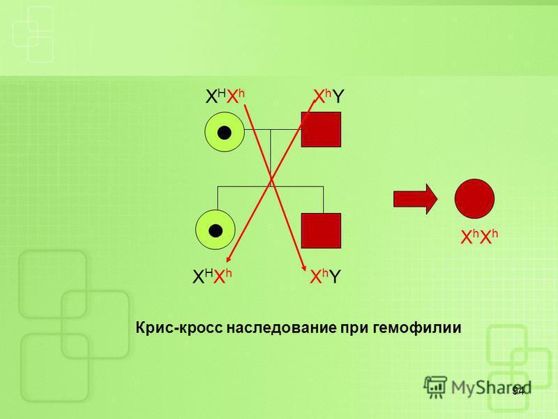 94 Х Н Х h X h Y Крис-кросс наследование при гемофилии ХhXhХhXh