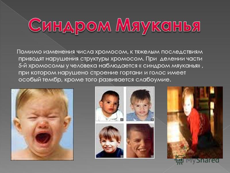 Помимо изменения числа хромосом, к тяжелым последствиям приводят нарушения структуры хромосом. При делении части 5-й хромосомы у человека наблюдается « синдром мяуканья», при котором нарушено строение гортани и голос имеет особый тембр, кроме того ра
