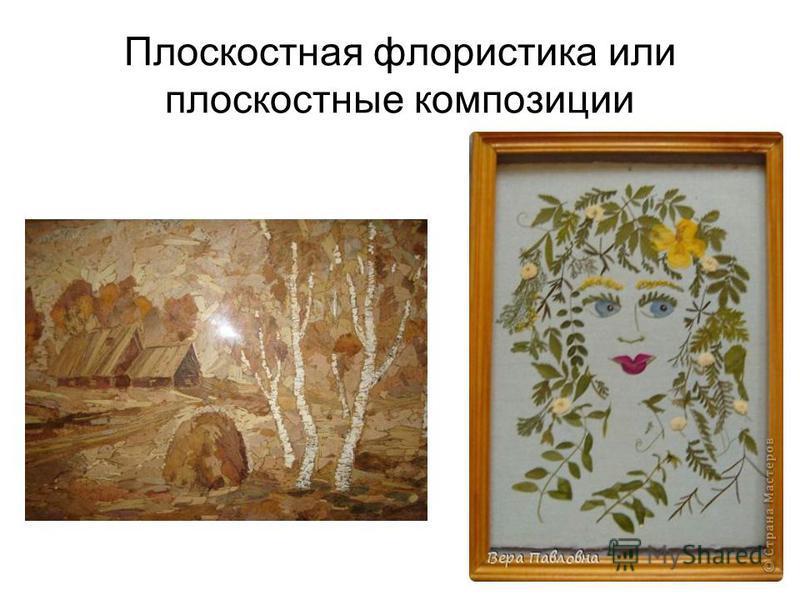 Плоскостная флористика или плоскостные композиции