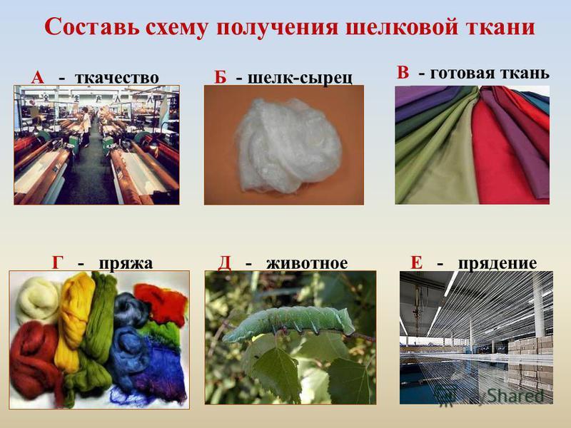 Составь схему получения шелковой ткани Е - прядение В - готовая ткань Б - шелк-сырец Д - животноеГ - пряжа А - ткачество