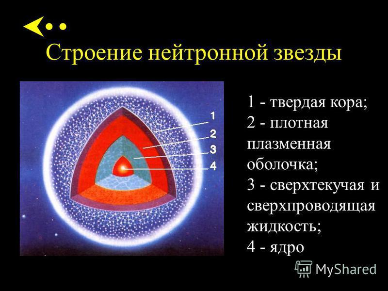 Строение нейтронной звезды 1 - твердая кора; 2 - плотная плазменная оболочка; 3 - сверхтекучая и сверхпроводящая жидкость; 4 - ядро