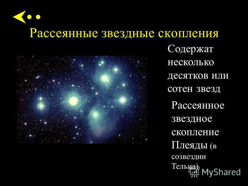 Рассеянные звездные скопления Содержат несколько десятков или сотен звезд Рассеянное звездное скопление Плеяды (в созвездии Тельца)