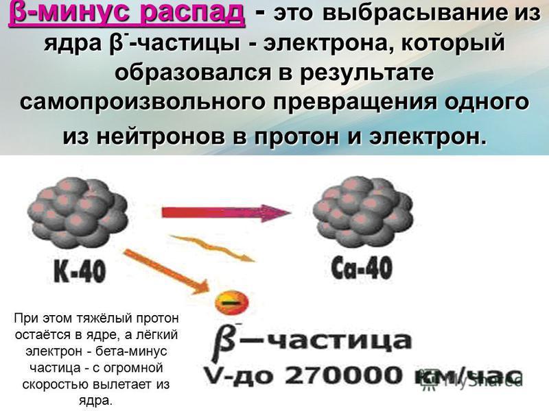 β-минус распад - это выбрасывание из ядра β - -частицы - электрона, который образовался в результате самопроизвольного превращения одного из нейтронов в протон и электрон. При этом тяжёлый протон остаётся в ядре, а лёгкий электрон - бета-минус частиц