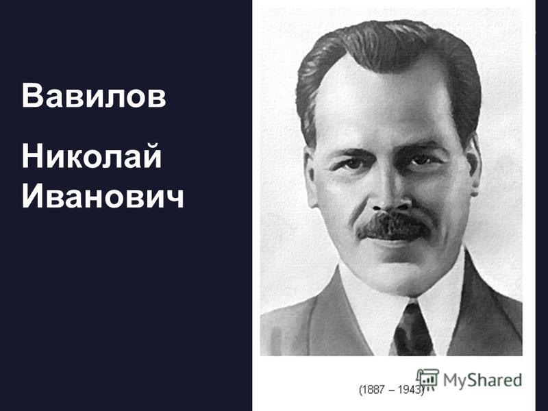 Вавилов Николай Иванович