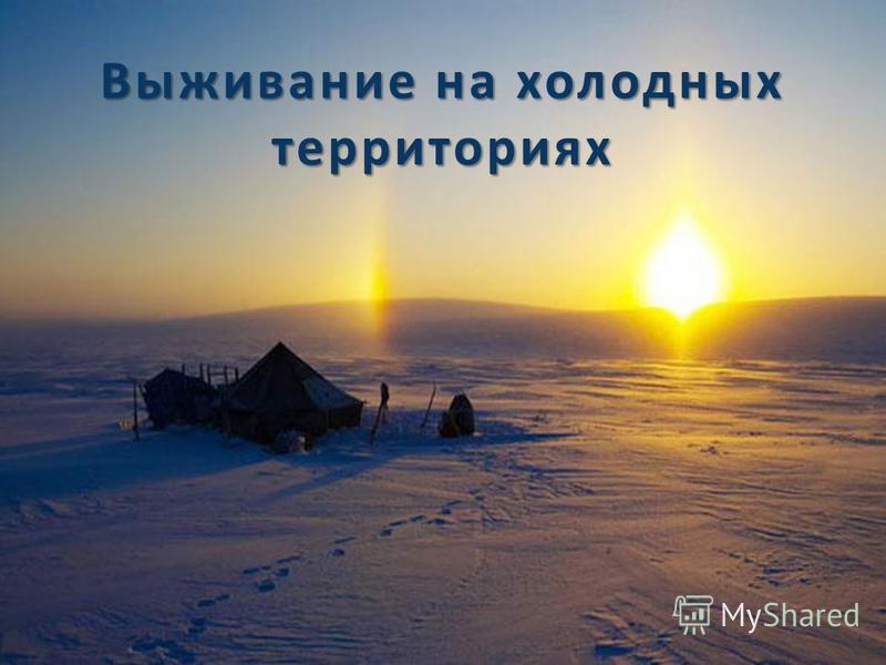 Выживание на холодных территориях