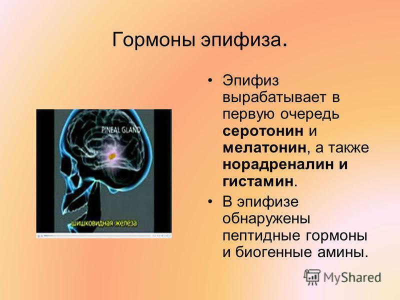 Гормоны эпифиза. Эпифиз вырабатывает в первую очередь серотонин и мелатонин, а также норадреналин и гистамин. В эпифизе обнаружены пептидные гормоны и биогенные амины.