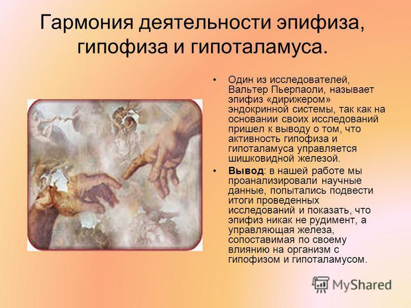 Гармония деятельности эпифиза, гипофиза и гипоталамуса. Один из исследователей, Вальтер Пьерпаоли, называет эпифиз «дирижером» эндокринной системы, так как на основании своих исследований пришел к выводу о том, что активность гипофиза и гипоталамуса