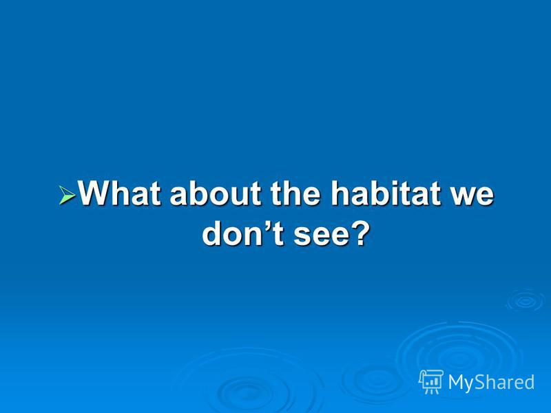 What about the habitat we dont see? What about the habitat we dont see?