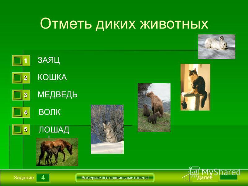4 Задание Выберите все правильные ответы! Отметь диких животных ЗАЯЦ КОШКА МЕДВЕДЬ ВОЛК Далее 1111 0 2222 0 3333 0 4444 0 5555 0 ЛОШАД Ь