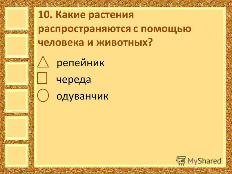 FokinaLida.75@mail.ru 10. Какие растения распространяются с помощью человека и животных? репейник череда одуванчик