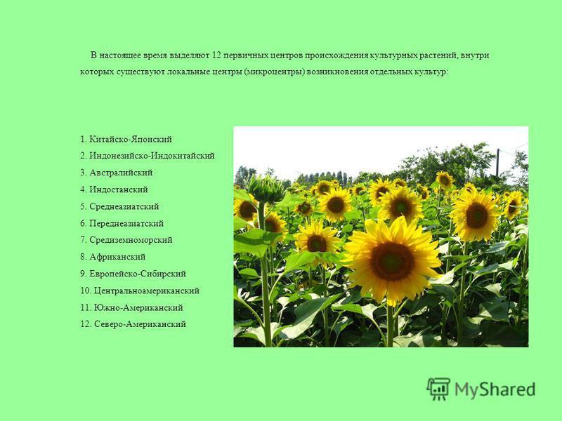 В настоящее время выделяют 12 первичных центров происхождения культурных растений, внутри которых существуют локальные центры (микроцентры) возникновения отдельных культур: 1. Китайско-Японский 2. Индонезийско-Индокитайский 3. Австралийский 4. Индост