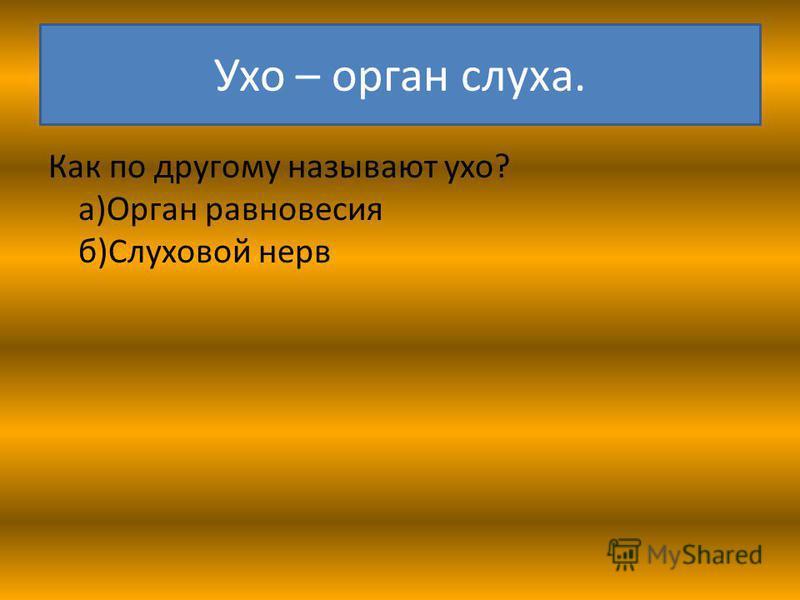 Ухо – орган слуха. Как по другому называют ухо? а)Орган равновесия б)Слуховой нерв