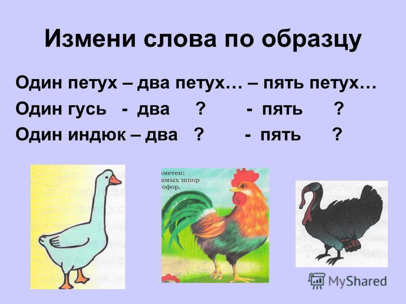 Измени слова по образцу Один петух – два петух… – пять петух… Один гусь - два ? - пять ? Один индюк – два ? - пять ?