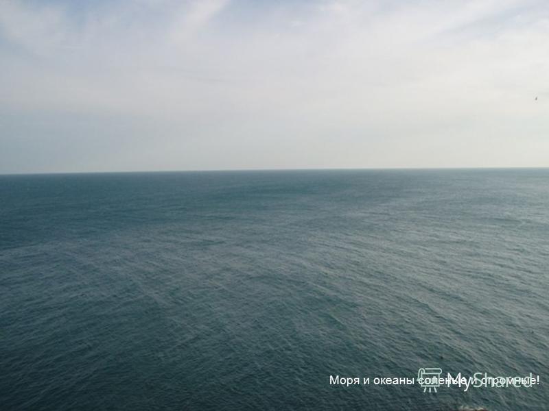 На нашей Земле есть вода (моря, реки и океаны) и суша (она сухая).