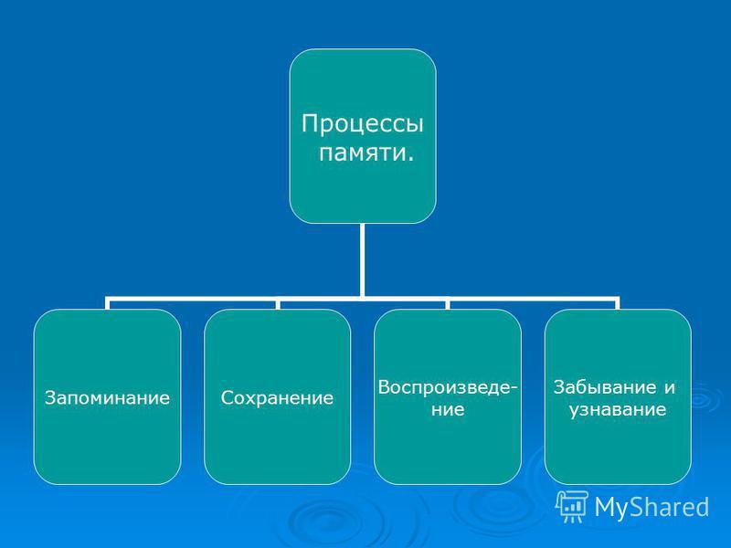 Процессы памяти. Запоминание Сохранение Воспроизведе- ние Забывание и узнавание