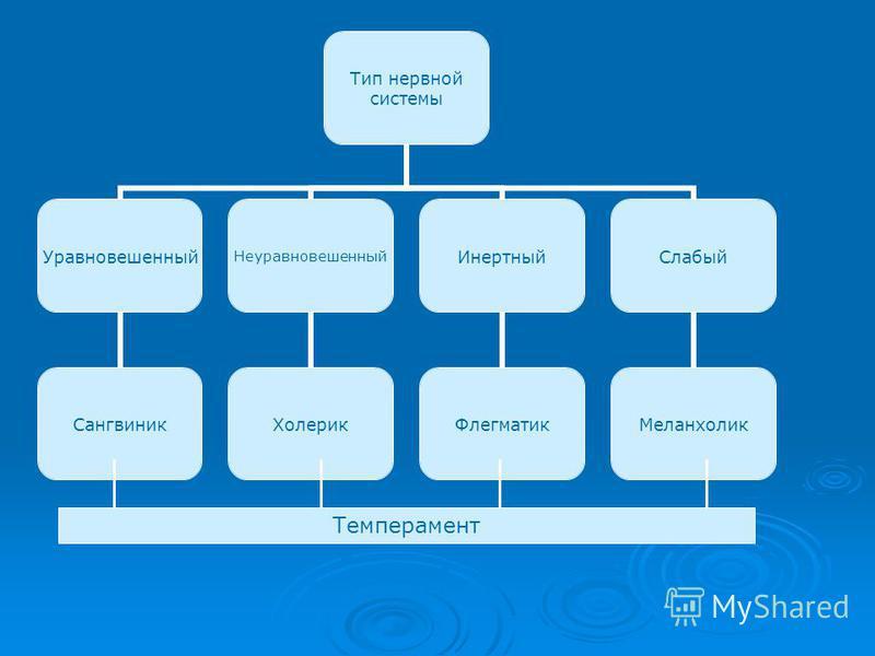 Тип нервной системы Уравновешенный Сангвиник Неуравновешенный Холерик Инертный Флегматик Слабый Меланхолик Темперамент
