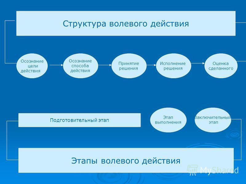 Структура волевого действия Осознание способа действия Принятие решения Исполнение решения Оценка сделанного Осознание цели действия Этапы волевого действия Подготовительный этап Этап выполнения Заключительный этап