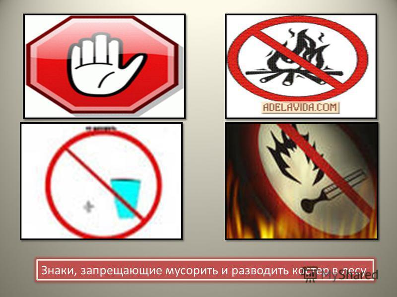 Знаки, запрещающие мусорить и разводить костер в лесу Знаки, запрещающие мусорить и разводить костер в лесу