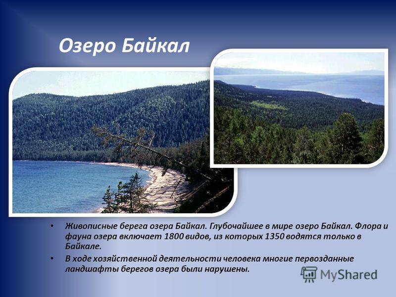 Озеро Байкал Живописные берега озера Байкал. Глубочайшее в мире озеро Байкал. Флора и фауна озера включает 1800 видов, из которых 1350 водятся только в Байкале. В ходе хозяйственной деятельности человека многие первозданные ландшафты берегов озера бы