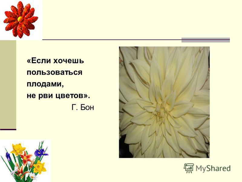 «Если хочешь пользоваться плодами, не рви цветов». Г. Бон