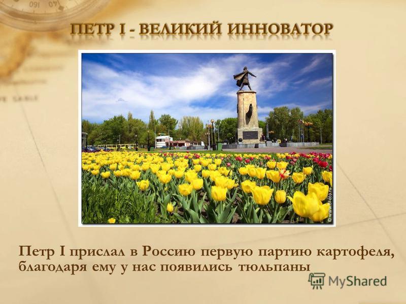 Петр I прислал в Россию первую партию картофеля, благодаря ему у нас появились тюльпаны