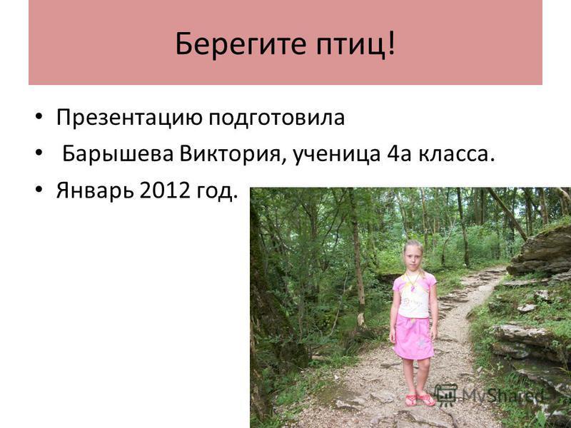 Берегите птиц! Презентацию подготовила Барышева Виктория, ученица 4 а класса. Январь 2012 год.