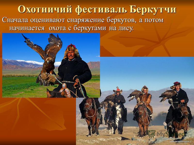 Охотничий фестиваль Беркутчи Сначала оценивают снаряжение беркутов, а потом начинается охота с беркутами на лису.